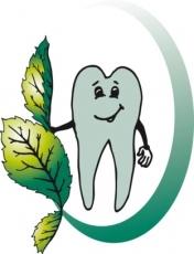 BJH ZahnFein Fluid frischer Atem, Mund & Zähne pflanzlich